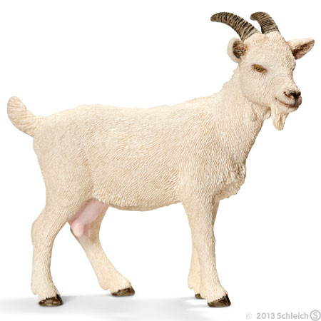 SC13719 Schleich Domestic Goat