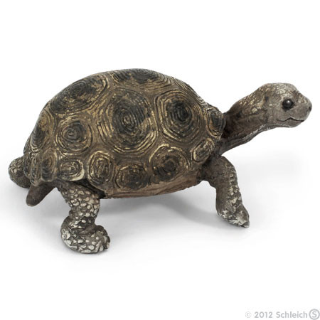 SC14643 Schleich Giant Tortoise Young