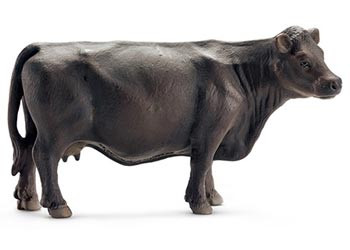 Schleich Black Angus Cow