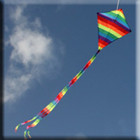 Windspeed Small Diamond Single String Kite- 700x570mm