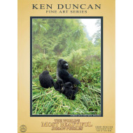 Ken Duncan Fine Art Gorillas in the Mist Africa 1000pc Puzzle