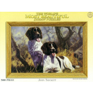 Trickett-S-Dogs-Springer-Spaniels-500pc
