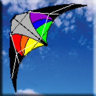 Windspeed Stinger Stunter Dual Control Kite- 1170mm Wingspan