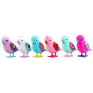 Little Live Pets S6 Bird Single Pack Assorted
