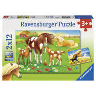 Ravensburger - Flowing Manes Puzzle 2x12pc